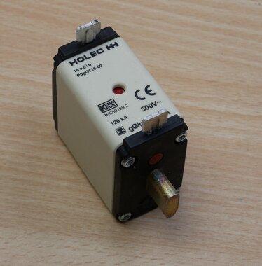 Holec P5GG125-00 smeltpatroon 125A 500V ac 915053 (3 stuks)